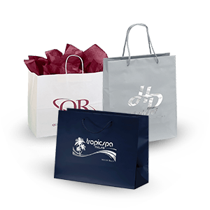 Promotional Gift and Paper Shopping Bags